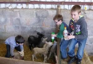 farm outing
